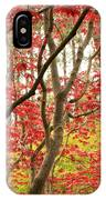 Red Maple Leaves And Branches IPhone Case