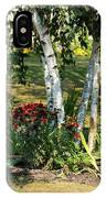 Red Mums And Birch Trees IPhone Case