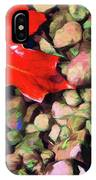 Red On The Rocks IPhone Case