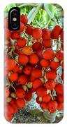 Red Palm Tree Fruit IPhone Case