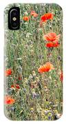 Red Poppies In A Summer Sun IPhone Case