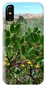 Red Rock Canyon Wild Flowers 20150525-06 IPhone Case