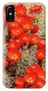 Red Rock Flowers IPhone Case