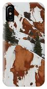 Red Rock Greenery IPhone Case