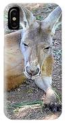 Red Roo Resting IPhone Case