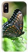 Red-spotted Purple 4172 IPhone Case