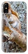 Red Squirrel Maine IPhone Case