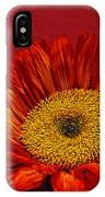 Red Sunflower Viii IPhone Case