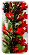 Red Texas Plume Flowers IPhone Case