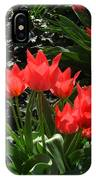 Red Tulips IPhone Case
