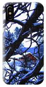 Red Woodshed IPhone Case