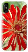 Red Zinnia IPhone Case