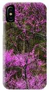 Redbud In The Woods IPhone Case