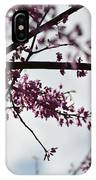 Redbuds In The Mist IPhone Case