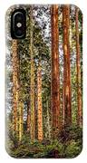 Redwood Forest Landscape IPhone Case