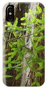 Redwood Tree Art Prints Baslee Troutman IPhone Case