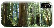 Redwood Trees Forest California Redwoods Baslee IPhone Case