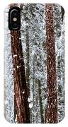 Redwoods In Snow IPhone Case