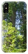 Redwoods Trees Forest Art Prints Baslee Troutman IPhone Case