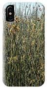 Reeds II IPhone Case