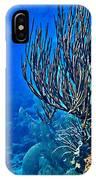 Reef Dive IPhone Case