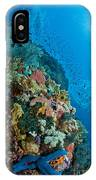 Reef Scene With Corals And Fish IPhone Case