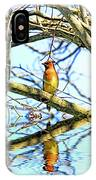 Refection Of Cedar Waxwing IPhone Case