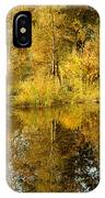Reflecting On Autumn Leaves IPhone Case