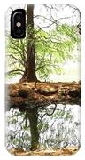 Reflecting Tree Trunks IPhone Case