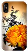 Reflections In Orange IPhone Case