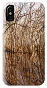 Reflections In The Swamp IPhone Case