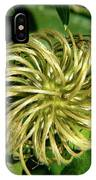 Remainder Of A Clematis Blossom IPhone Case