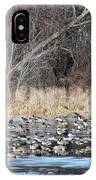Resting Canadian Geese IPhone Case