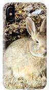 Resting Cottontail IPhone Case