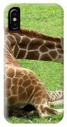 Resting Giraffe IPhone Case