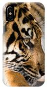 Resting Yet Watchful Tiger IPhone Case