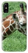 Reticulated Giraffe #3 IPhone Case