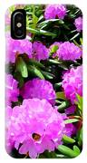 Rhododendrons In Bloom IPhone Case