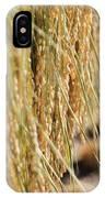 Rice Harvest IPhone X Case