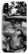Riding The Elephant IPhone Case