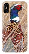Ring-necked Pheasant  IPhone Case