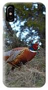 Ring Necked Pheasant IPhone Case by David Armstrong