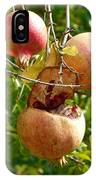 Ripe Pomegranates IPhone Case