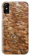 River Bed IPhone Case