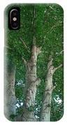 River Birches IPhone Case