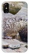 River Otters IPhone Case
