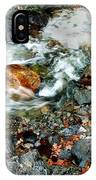 River Rock Leaves IPhone Case