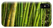 Road To Hana Bamboo Panorama - Maui Hawaii IPhone Case