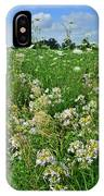 Roadside Bouquet Of Wildflowers In Mchenry County IPhone Case