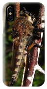 Robber Fly IPhone Case
